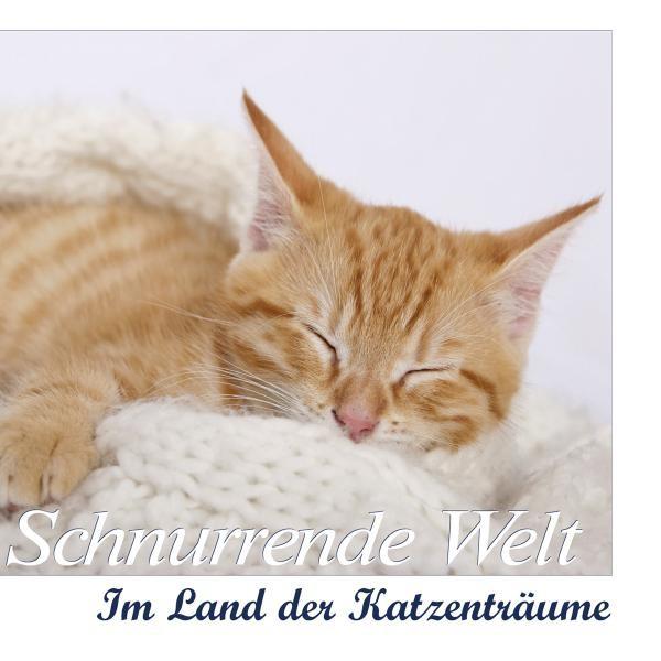 SCHNURRENDE WELT-Im Land d.Katzenträume