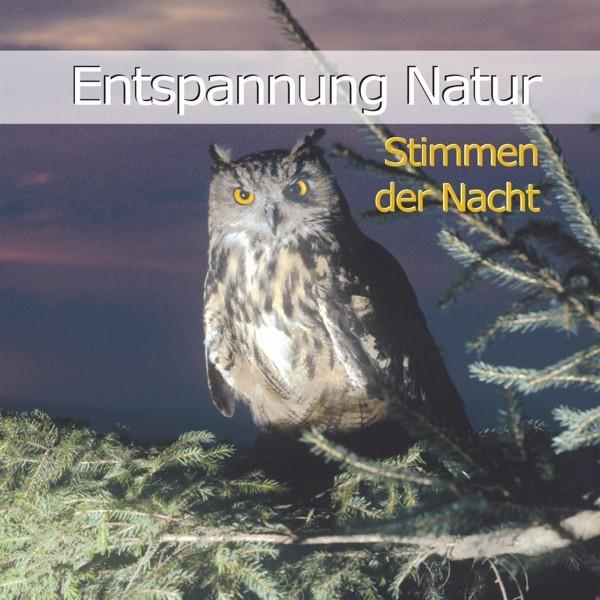 Entspannung Natur-Stimmen der Nacht