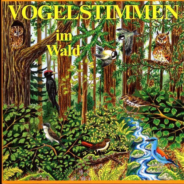 Vogelstimmen im Wald,Ed.4