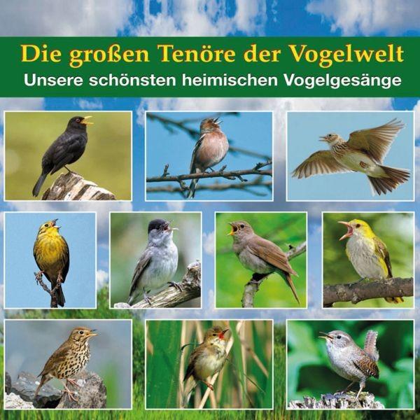 Die großen Tenöre der Vogelwelt